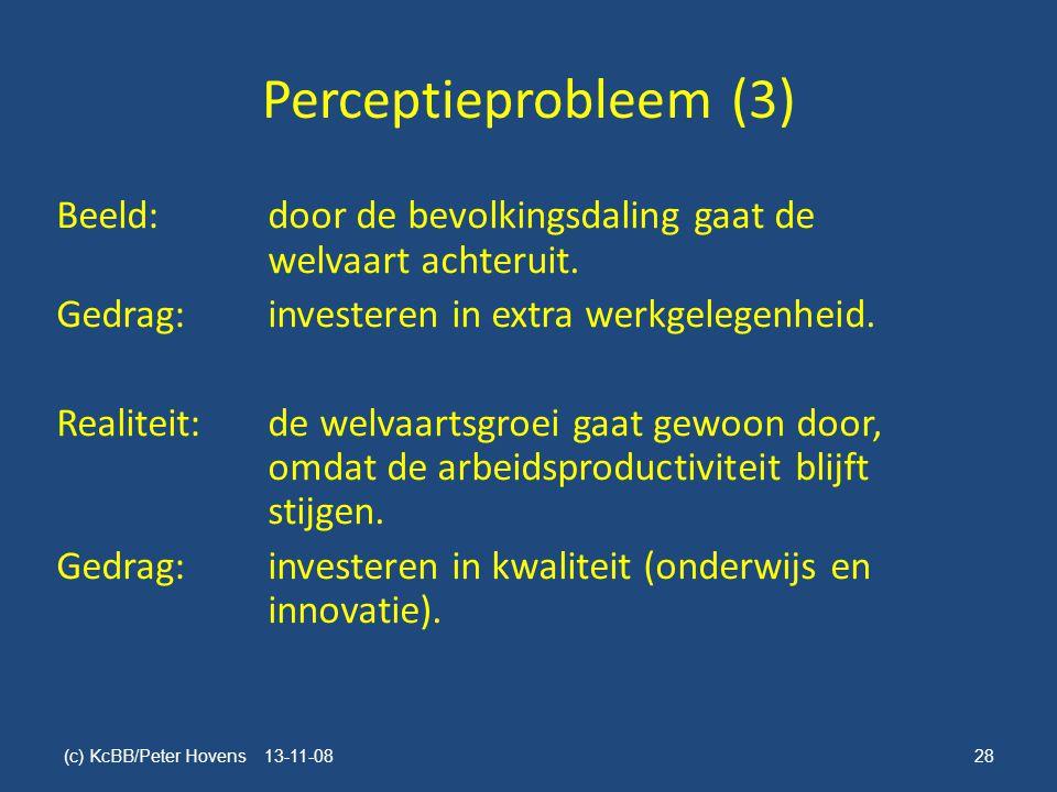 Perceptieprobleem (3)