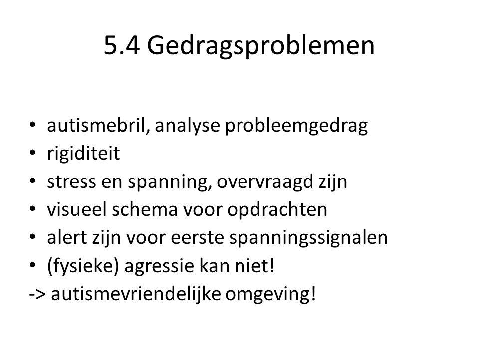 5.4 Gedragsproblemen autismebril, analyse probleemgedrag rigiditeit