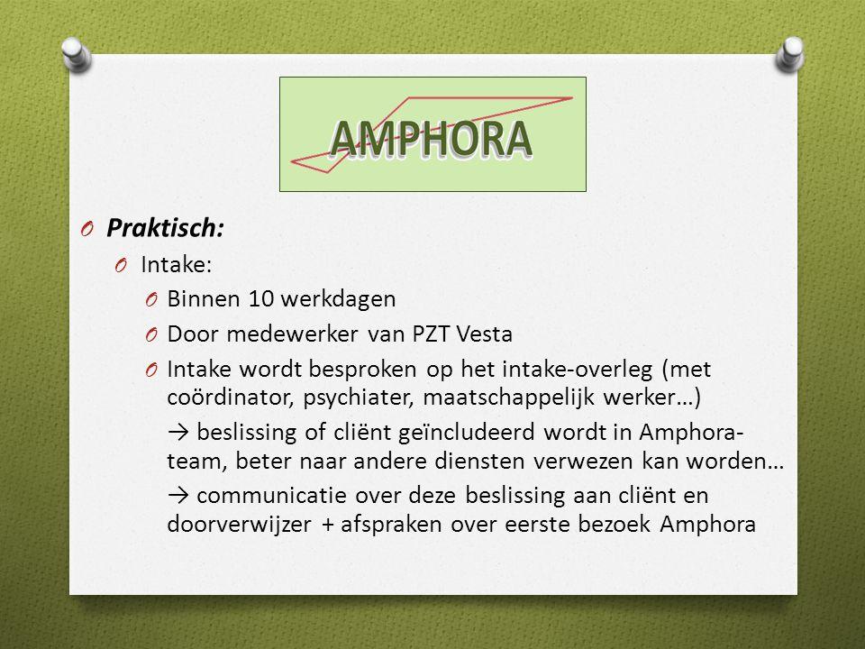 Praktisch: Intake: Binnen 10 werkdagen Door medewerker van PZT Vesta