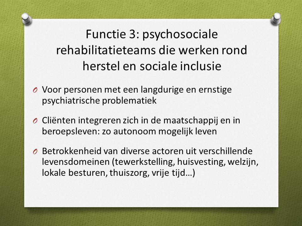 Functie 3: psychosociale rehabilitatieteams die werken rond herstel en sociale inclusie