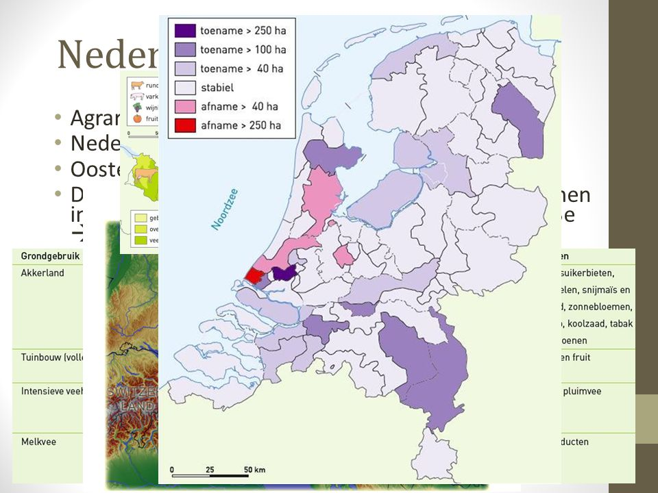 Nederland vs Oostenrijk