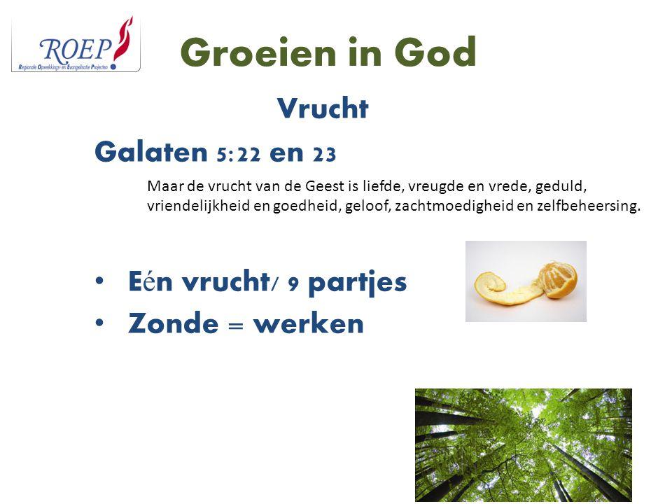 Vrucht Galaten 5:22 en 23 Eén vrucht/ 9 partjes Zonde = werken