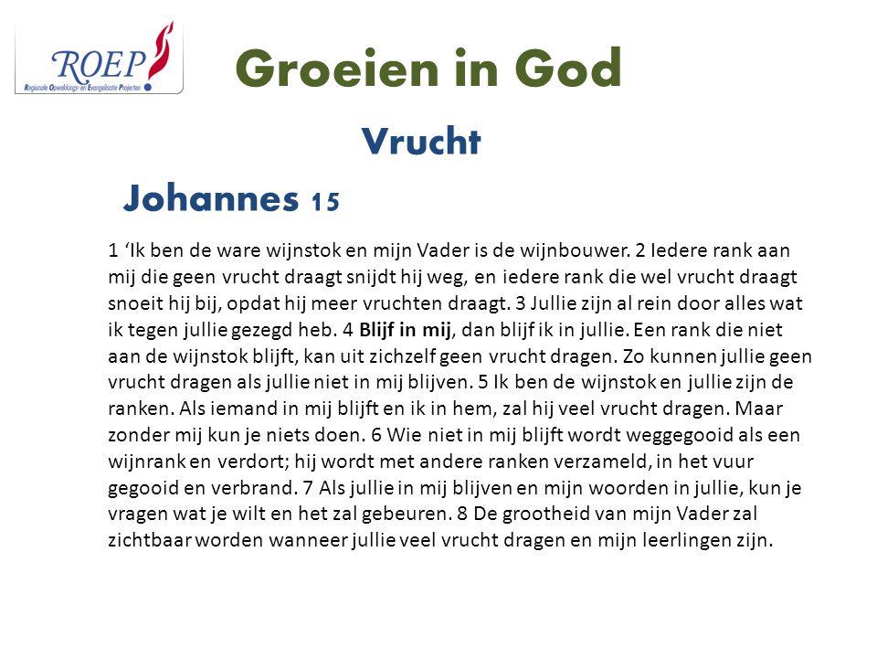 Groeien in God Vrucht Johannes 15