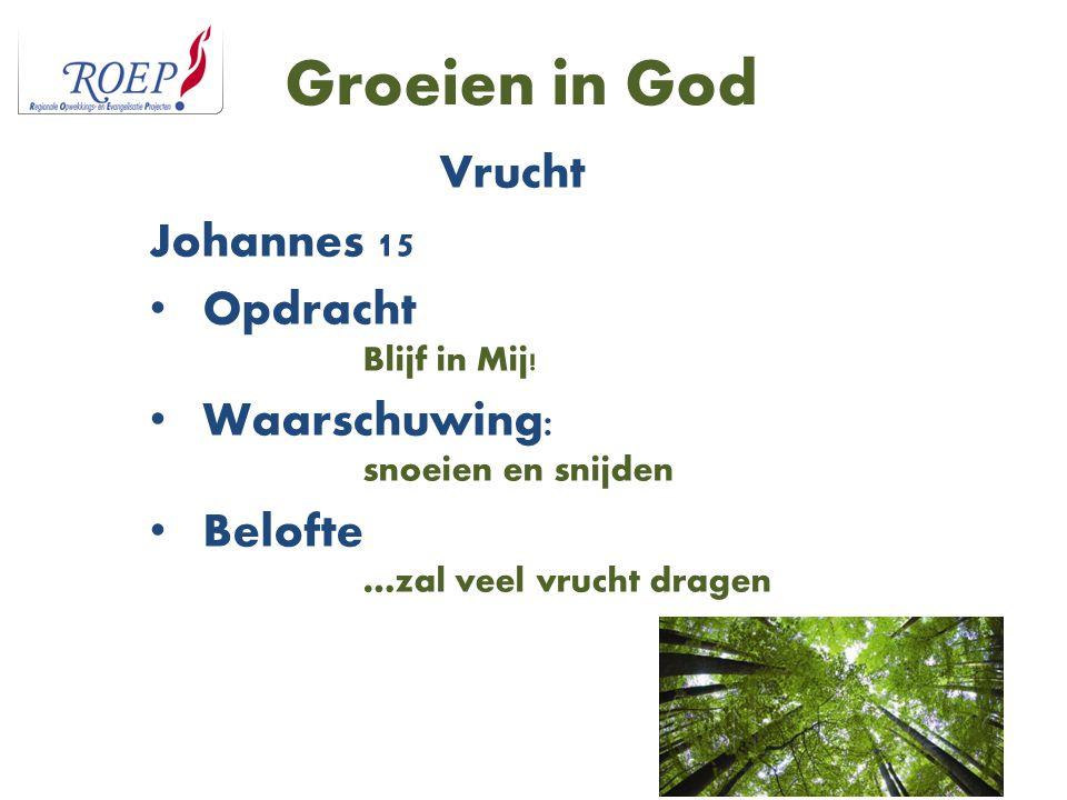 Groeien in God Vrucht Johannes 15 Opdracht Blijf in Mij!