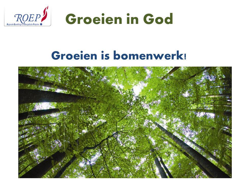 Groeien in God Groeien is bomenwerk!