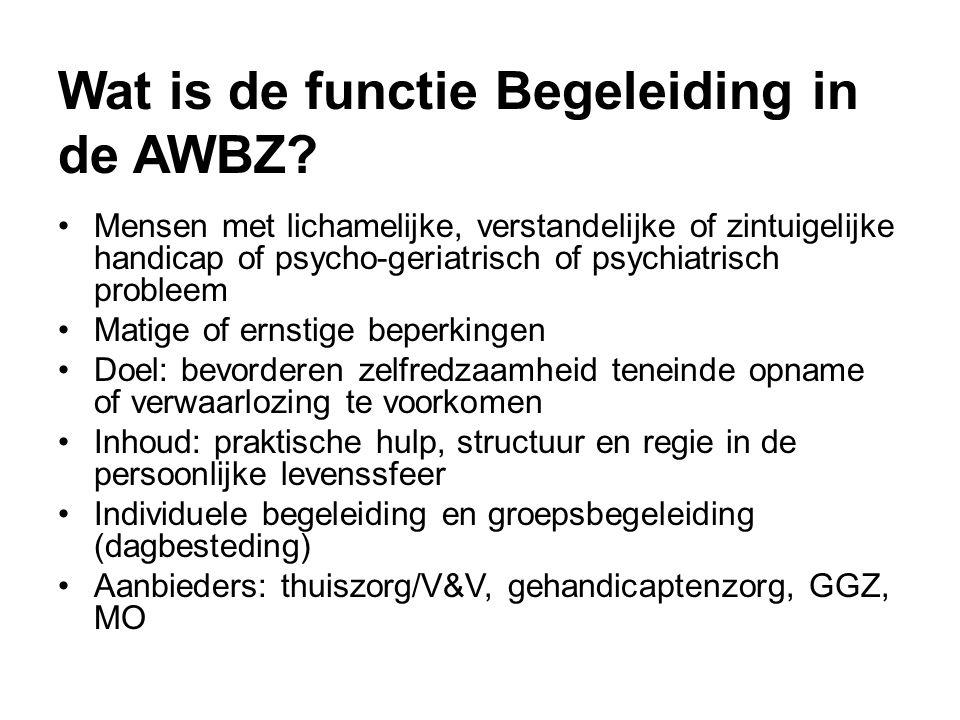 Wat is de functie Begeleiding in de AWBZ