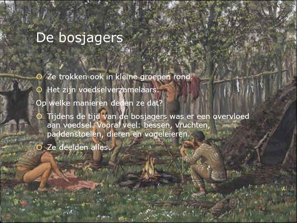 De bosjagers Ze trokken ook in kleine groepen rond.