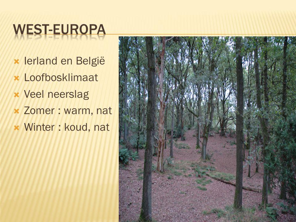 West-Europa Ierland en België Loofbosklimaat Veel neerslag