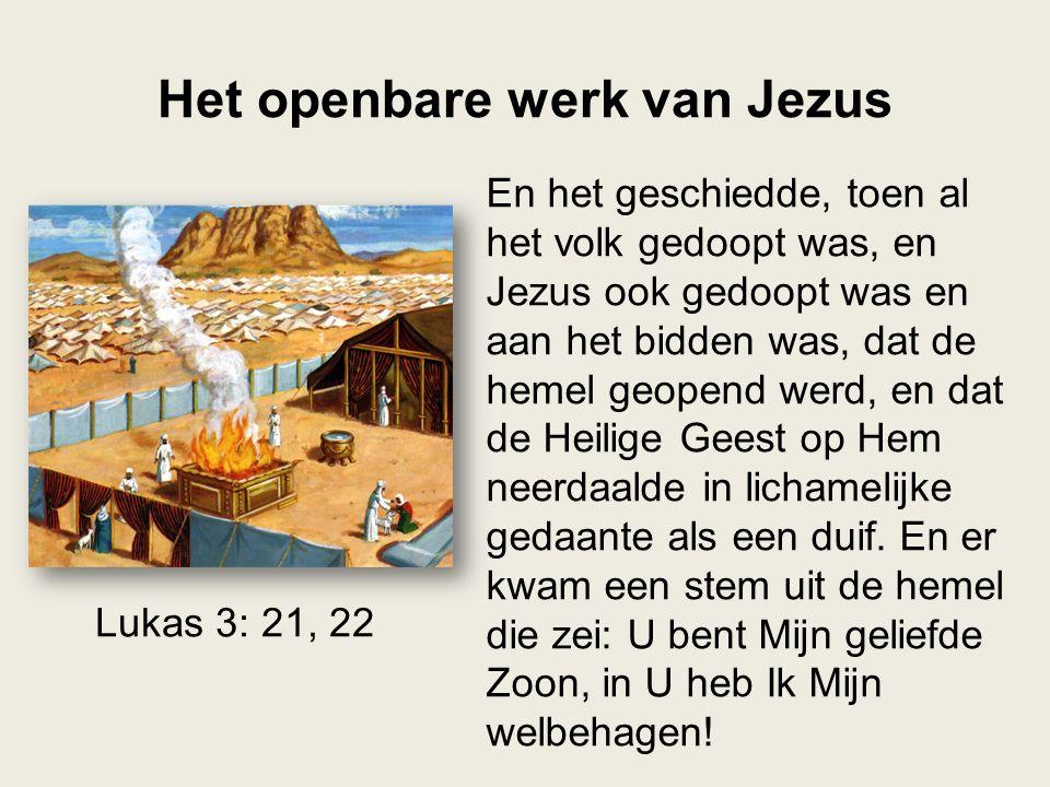 Het openbare werk van Jezus