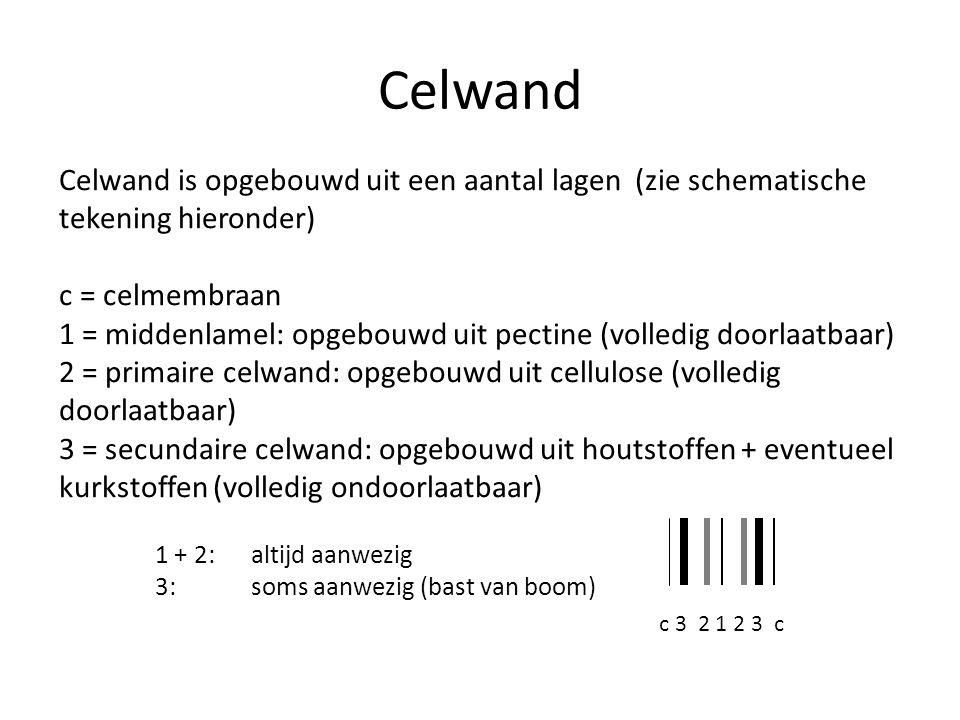 Celwand Celwand is opgebouwd uit een aantal lagen (zie schematische tekening hieronder) c = celmembraan.