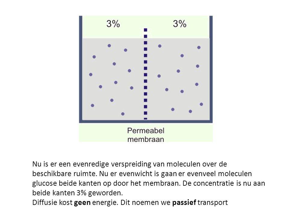 Nu is er een evenredige verspreiding van moleculen over de beschikbare ruimte. Nu er evenwicht is gaan er evenveel moleculen glucose beide kanten op door het membraan. De concentratie is nu aan beide kanten 3% geworden.
