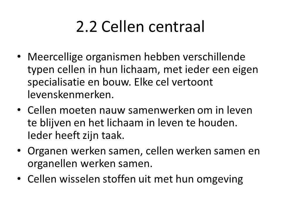2.2 Cellen centraal
