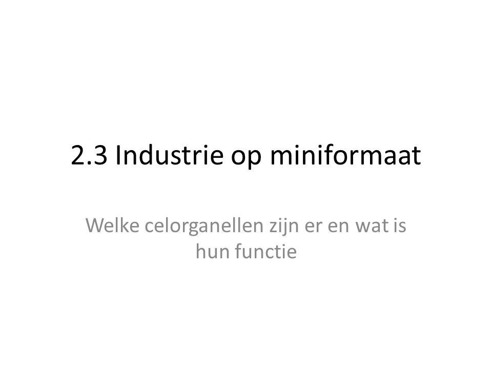 2.3 Industrie op miniformaat