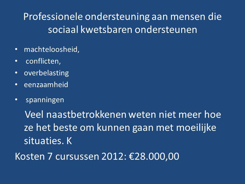 Professionele ondersteuning aan mensen die sociaal kwetsbaren ondersteunen