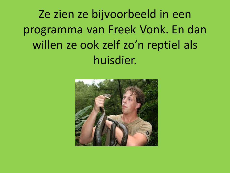 Ze zien ze bijvoorbeeld in een programma van Freek Vonk