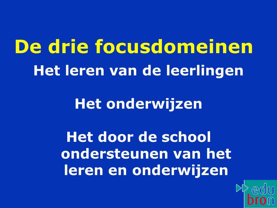 De drie focusdomeinen Het leren van de leerlingen Het onderwijzen