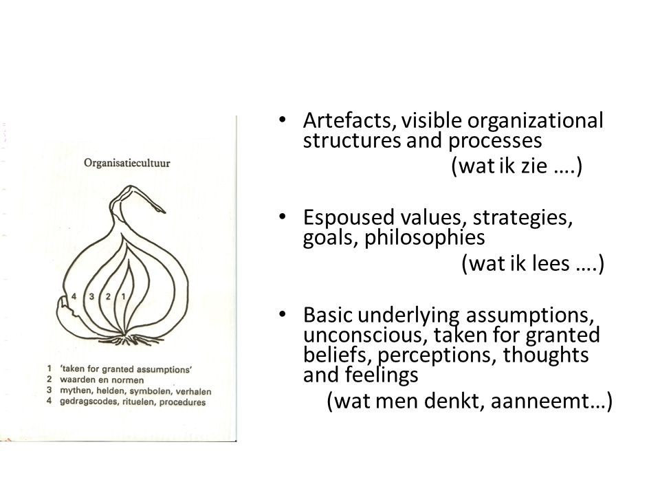 Artefacts, visible organizational structures and processes