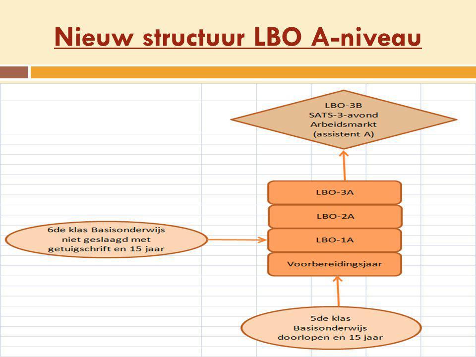 Nieuw structuur LBO A-niveau