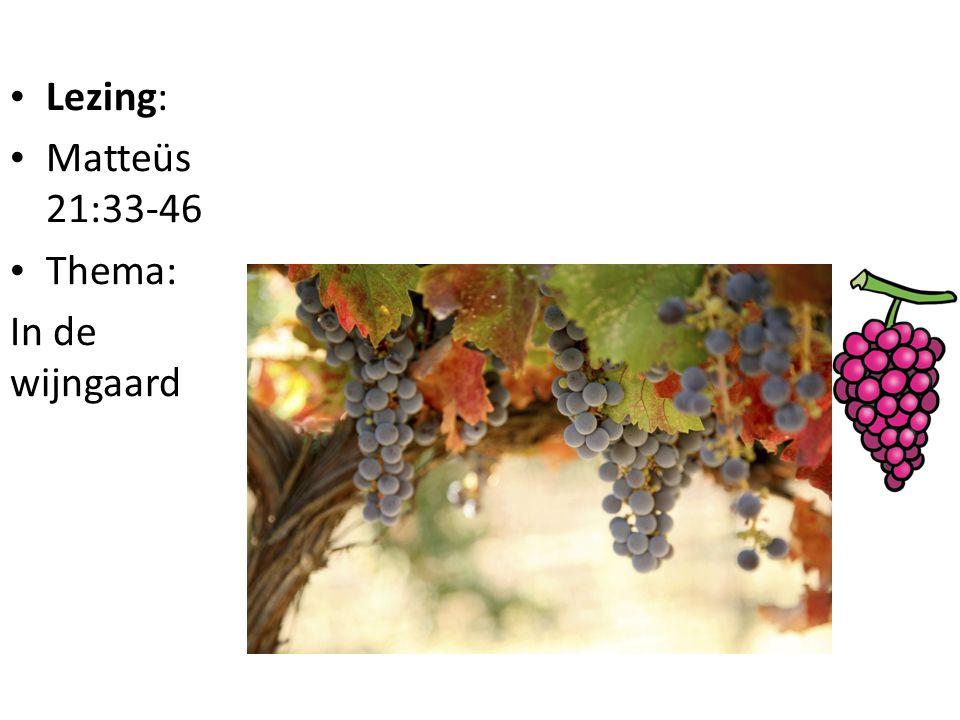 Lezing: Matteüs 21:33-46 Thema: In de wijngaard