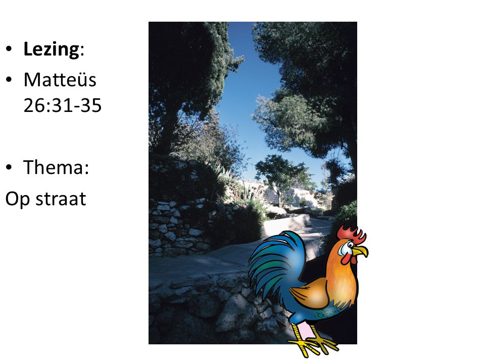 Lezing: Matteüs 26:31-35 Thema: Op straat