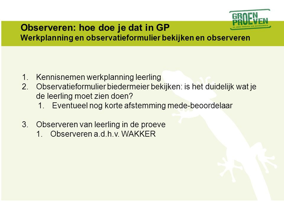 Observeren: hoe doe je dat in GP