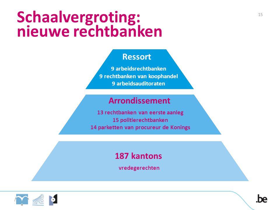 Schaalvergroting: nieuwe rechtbanken