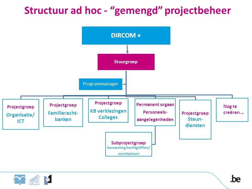 Structuur ad hoc - gemengd projectbeheer