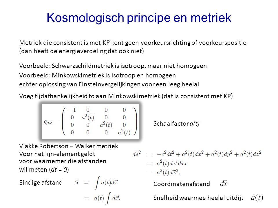 Kosmologisch principe en metriek