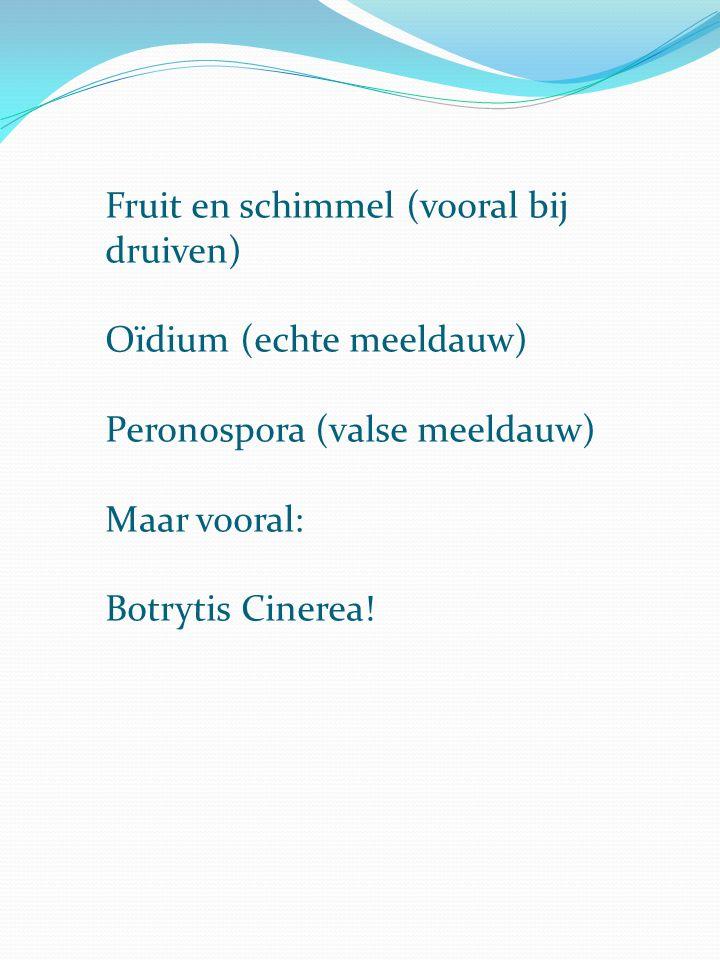 Fruit en schimmel (vooral bij druiven)