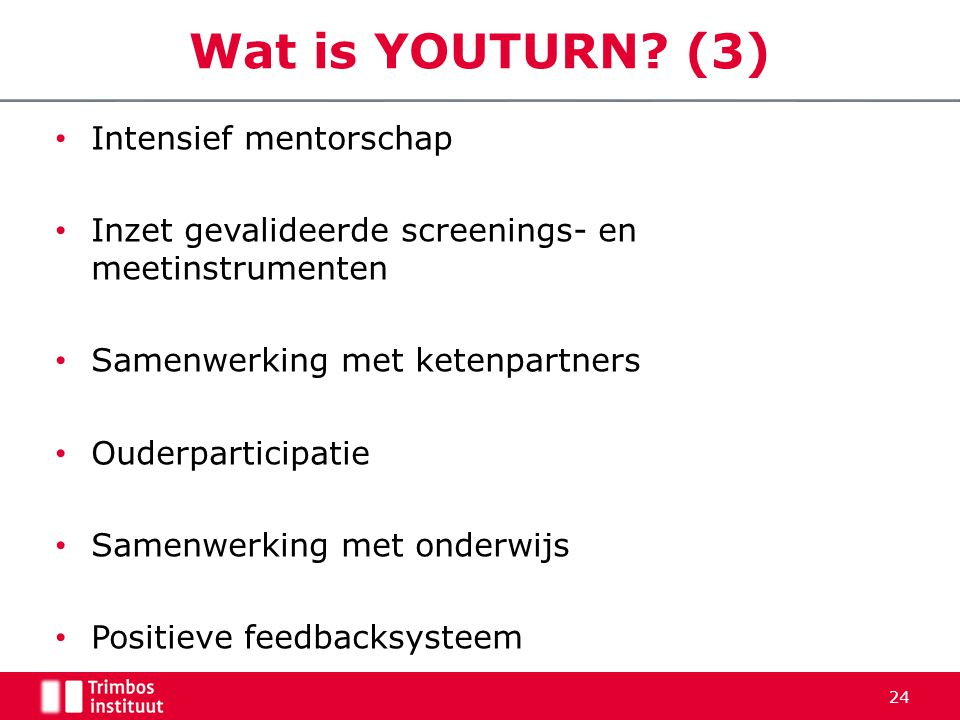 Wat is YOUTURN (3) Intensief mentorschap