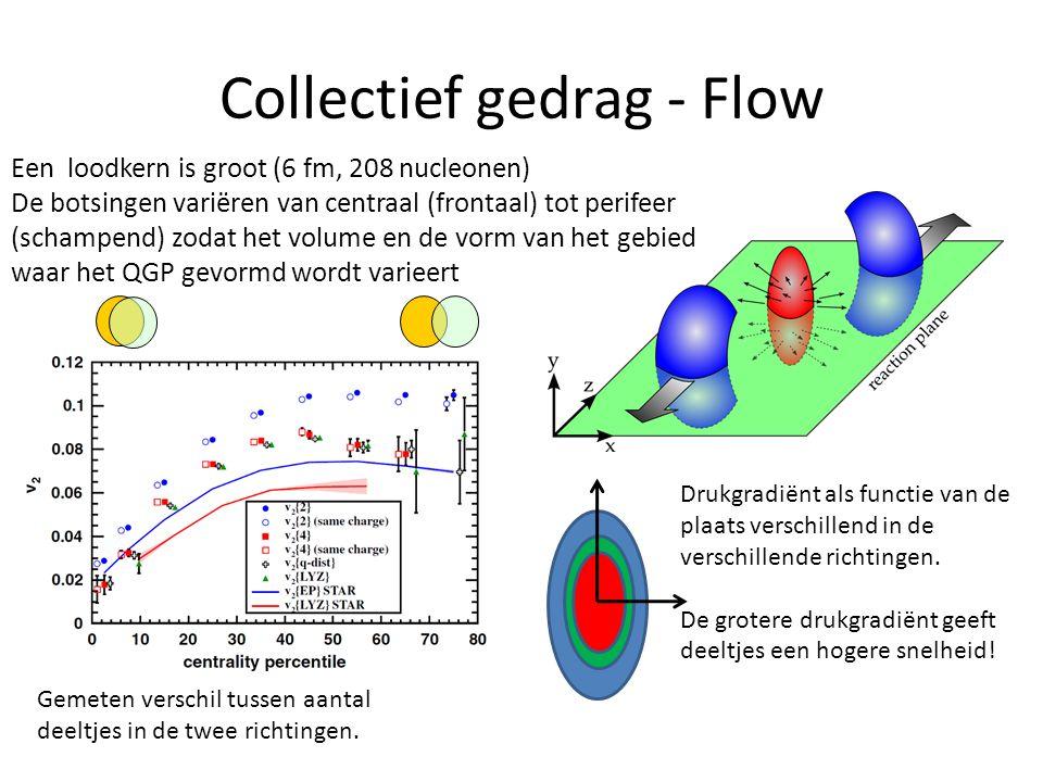 Collectief gedrag - Flow