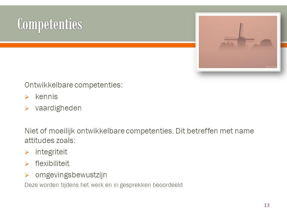 Competenties Ontwikkelbare competenties: kennis vaardigheden