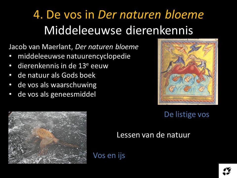 4. De vos in Der naturen bloeme Middeleeuwse dierenkennis