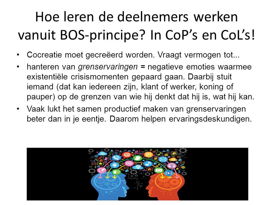 Hoe leren de deelnemers werken vanuit BOS-principe In CoP's en CoL's!