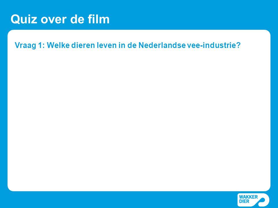 Vraag 1: Welke dieren leven in de Nederlandse vee-industrie