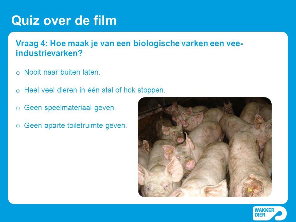Quiz over de film Vraag 4: Hoe maak je van een biologische varken een vee-industrievarken Nooit naar buiten laten.