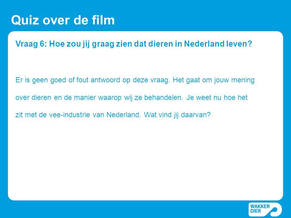 Vraag 6: Hoe zou jij graag zien dat dieren in Nederland leven