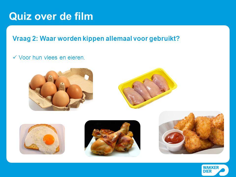 Vraag 2: Waar worden kippen allemaal voor gebruikt