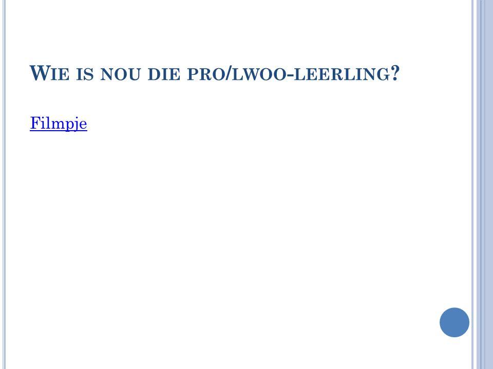 Wie is nou die pro/lwoo-leerling
