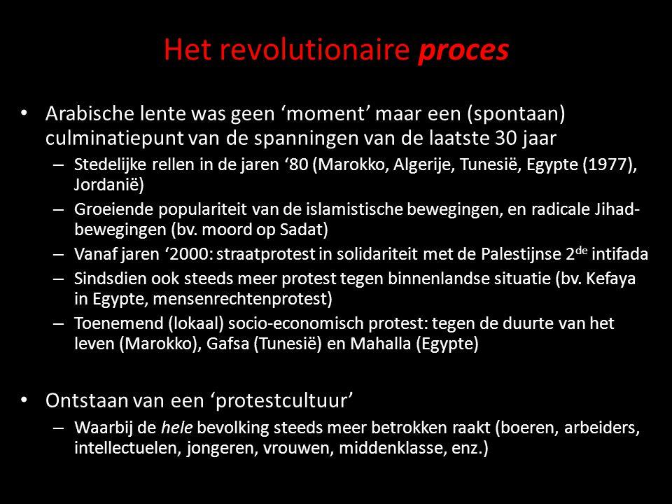Het revolutionaire proces