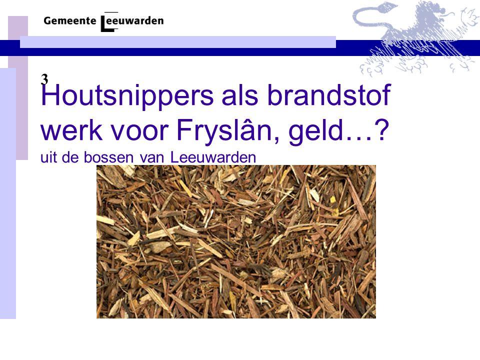 3 Houtsnippers als brandstof werk voor Fryslân, geld… uit de bossen van Leeuwarden
