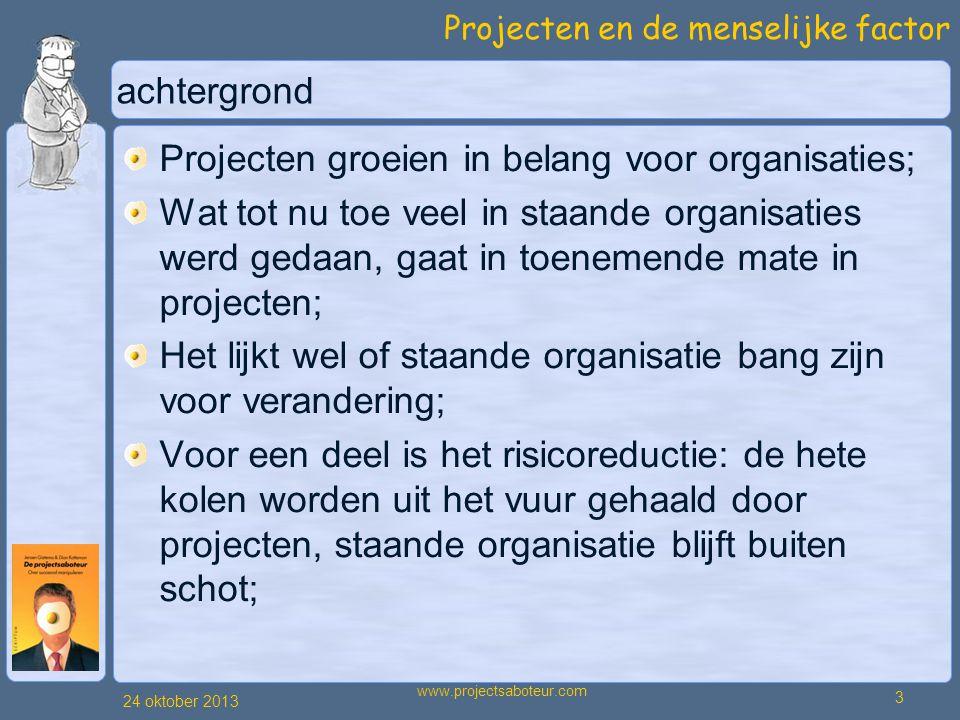 Projecten groeien in belang voor organisaties;