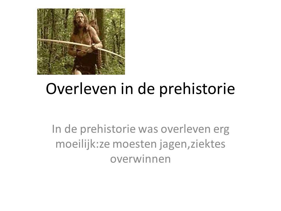 Overleven in de prehistorie