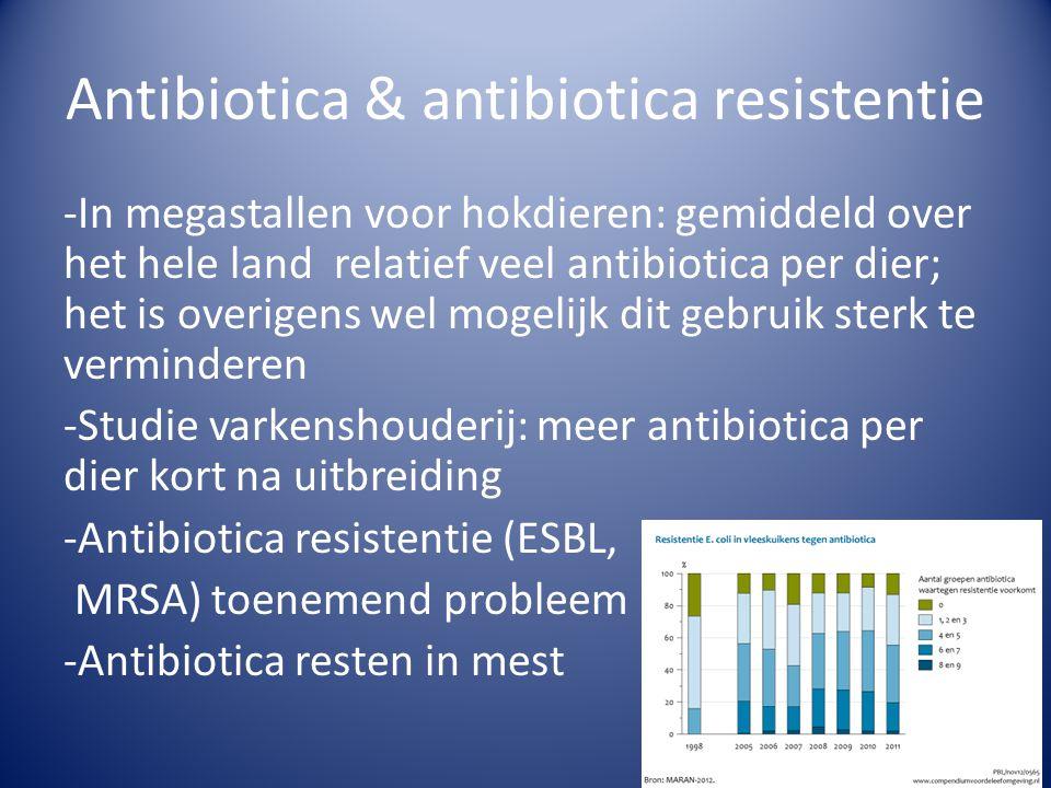Antibiotica & antibiotica resistentie