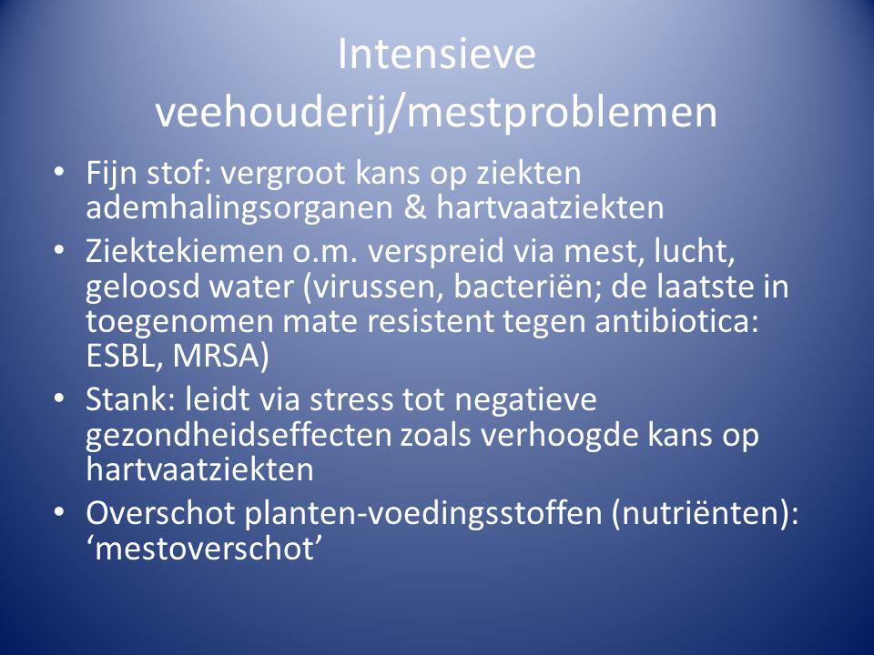 Intensieve veehouderij/mestproblemen
