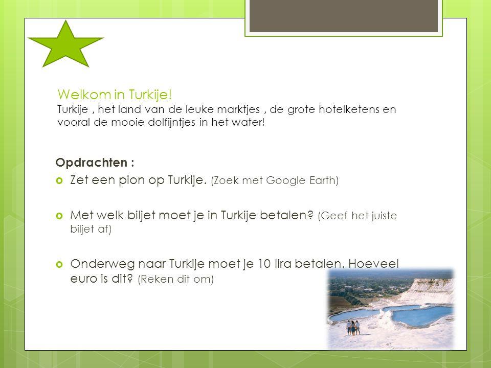 Welkom in Turkije! Turkije , het land van de leuke marktjes , de grote hotelketens en vooral de mooie dolfijntjes in het water!
