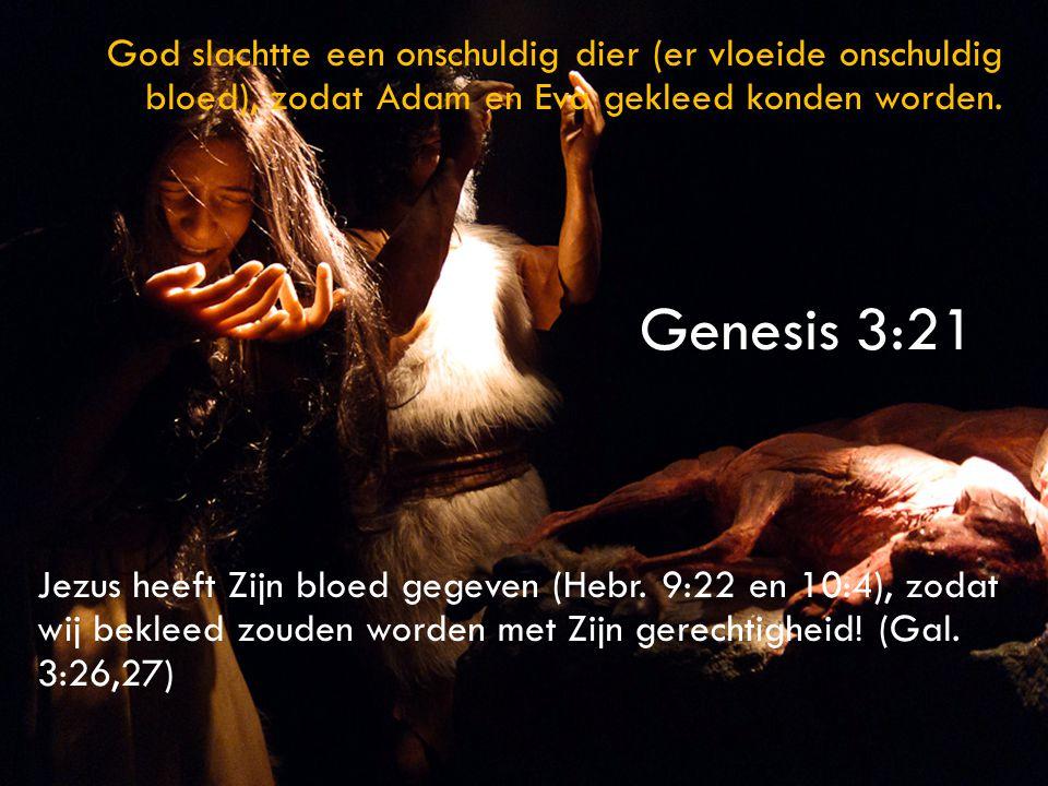 God slachtte een onschuldig dier (er vloeide onschuldig bloed), zodat Adam en Eva gekleed konden worden.