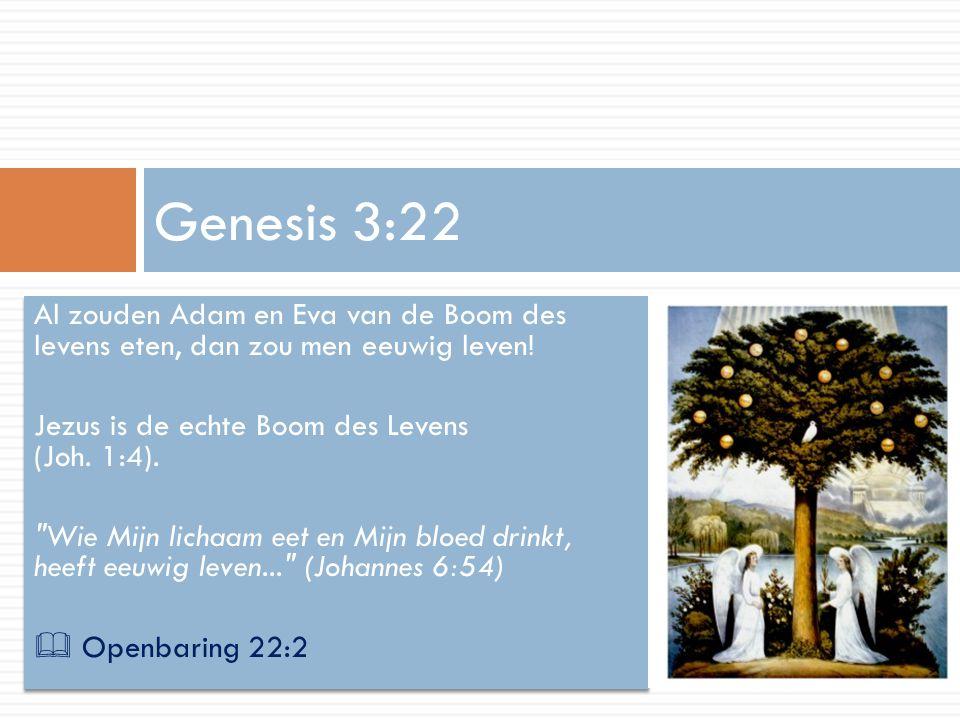 Genesis 3:22 Al zouden Adam en Eva van de Boom des levens eten, dan zou men eeuwig leven! Jezus is de echte Boom des Levens (Joh. 1:4).