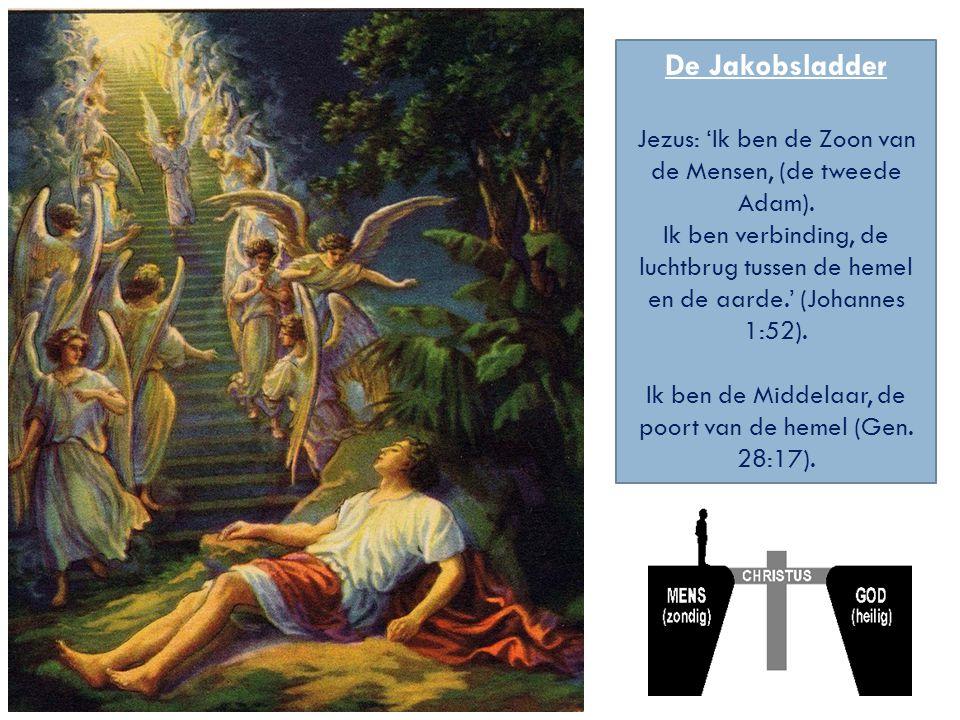 De Jakobsladder Jezus: 'Ik ben de Zoon van de Mensen, (de tweede Adam).