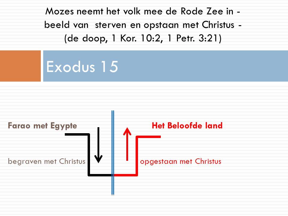 Mozes neemt het volk mee de Rode Zee in - beeld van sterven en opstaan met Christus -